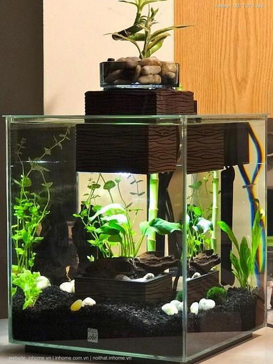 Bố trí bể cá cảnh trong phòng khách chung cư hợp lý